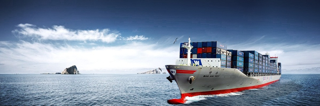 Air International Courier and Cargo, Courier services in